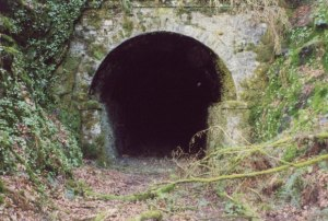 Meanclochog Tunnel (from www.geograph.org.uk)
