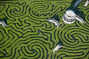 The maze at Longleat in the UK - from mirror.co.uk